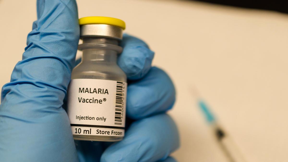 neuer impfstoff gegen malaria entwickelt. Black Bedroom Furniture Sets. Home Design Ideas